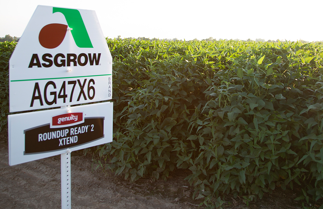 Asgrow® soybean field with Roundup Ready® 2 Xtend sign in field
