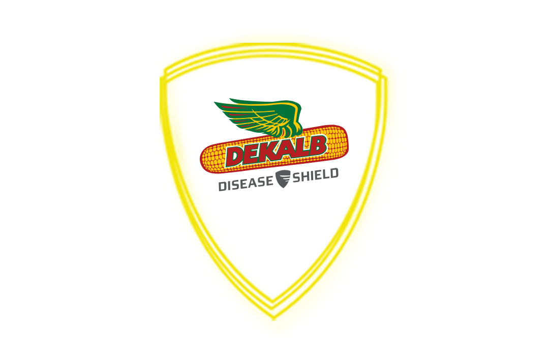 DEKALB® Disease Shield™ Logo Electric Lockup