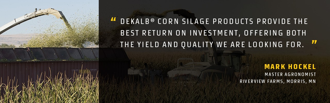 Quote from DEKALB® Master Agronomist Mark Hockel