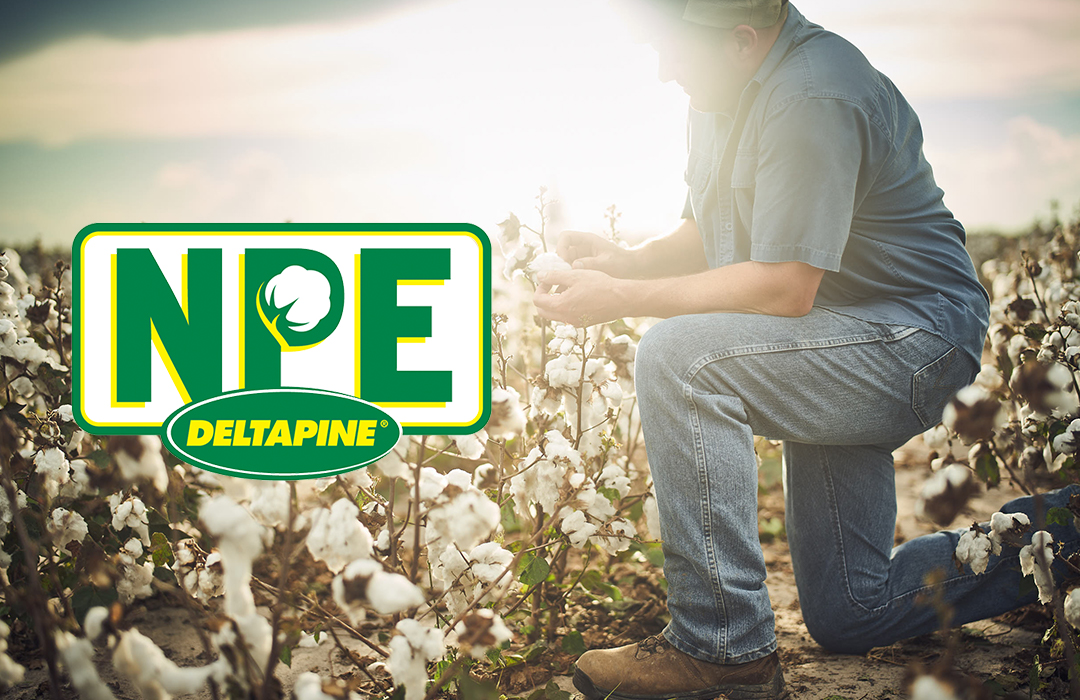 Deltapine new product evaluators (NPEs)