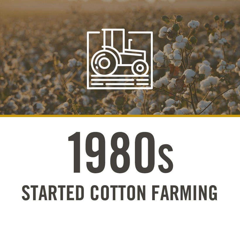 1980s started cotton farming