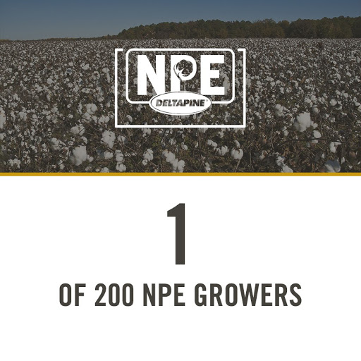 1 of 200 NPE growers